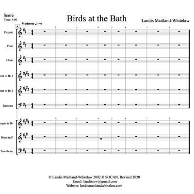 Birds at the Bath